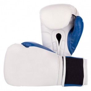 White And Blue Boxing Gloves